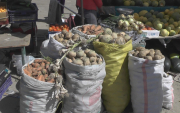 Vegetables to be transported by railway from Darkhan