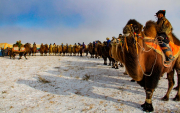 'In Praise of Camels' – massive festival in Zavkhan