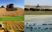 Mongolia to focus on supporting agriculture and light industry