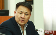 Young Mongolian election candidate detained
