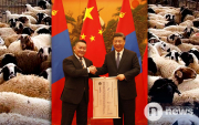 Mongolia to deliver 30 thousand sheep to China from September