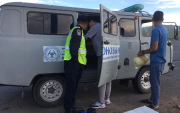 Bubonic Plague in Mongolia: 12 dead marmots seized in Khuvsgul