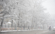 Here comes winter! Blizzards forecast in Mongolia