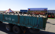 Mongolia's gift of sheep: Ceremony held at Chinese border