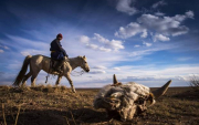 The Green Climate approves USD 23.1 million for Mongolian herders