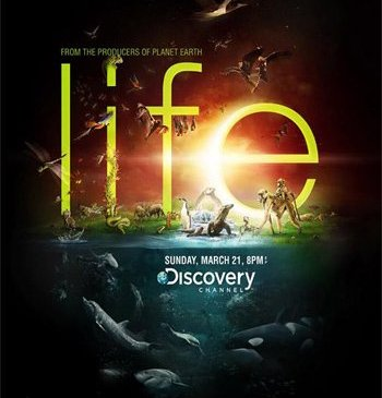 "Discovery Channel ""Life"" 2-р хэсэг 2010  DVDRip"