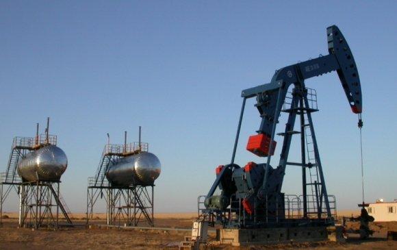 Нефть боловсруулах үйлдвэр барих ТӨК байгуулна