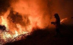 Ойн түймэрт 2000 хүн хашигджээ