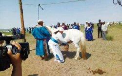 Монгол судлаачид малчны амьдралаар гурав хонов