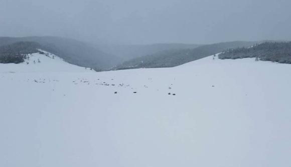 Хөвсгөл, Баян-Өлгий аймагт нойтон цас оржээ