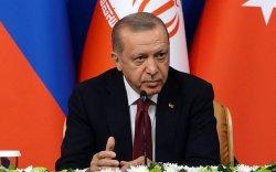 Эрдоган Японд айлчилж, Эзэн хаан Нарухито, Абэ Шинзо нартай уулзана