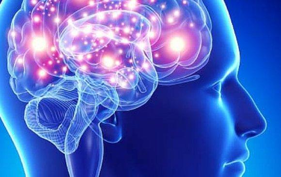 Хиймэл эрхтнийг тархитай холбож чаджээ