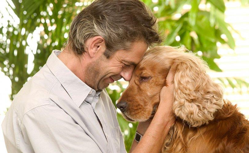 """Хүмүүс хүнээс илүү нохойнд """"хайртай"""""""