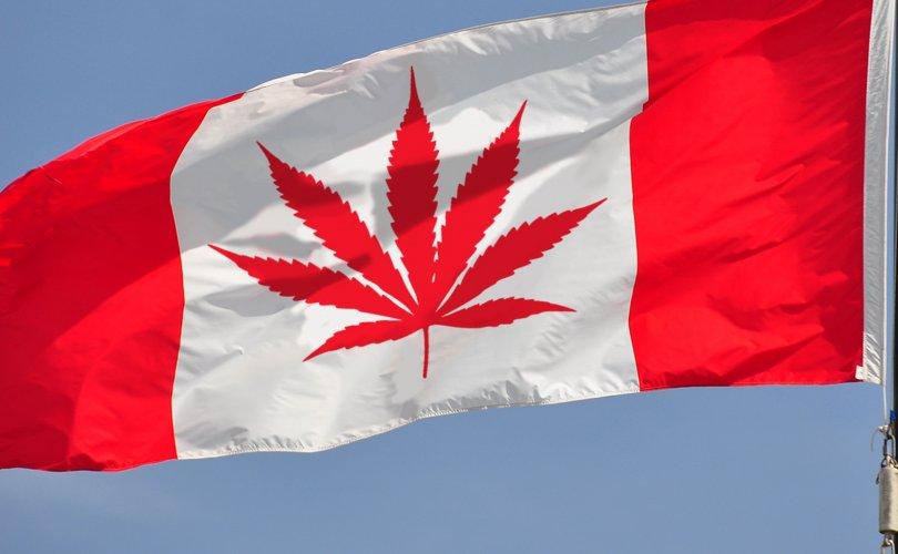 Канад улс марихуаны хэрэглээг зөвшөөрчээ