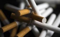 Жилд тамхинаас болж 7 сая гаруй хүн нас бардаг