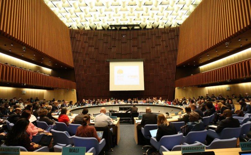 Тамхин бүтээгдэхүүний хууль бус худалдааг устгах тухай протоколын талуудын уулзалтад оролцож байна