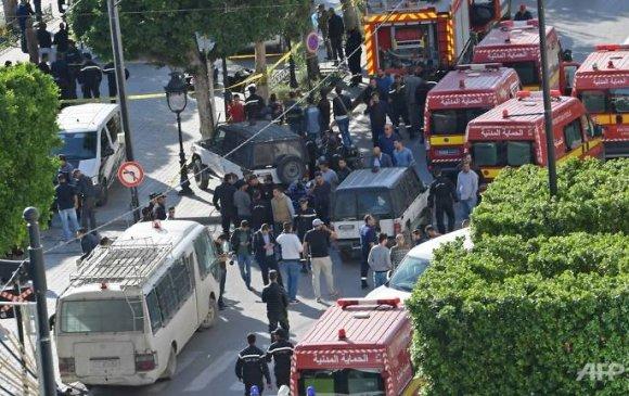 Тунист амиа золиослогч бөмбөг дэлбэлжээ