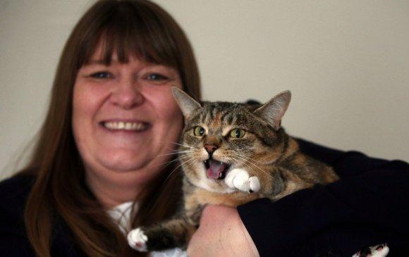 Эзнийгээ хөхний хорт хавдраас аварсан муур