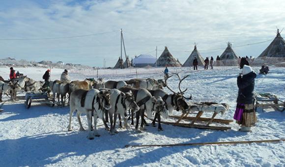 Ямалын тойргийн уугуул хүн ам 48 мянгад хүрчээ