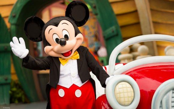 Мики хулгана 90 нас хүрчээ