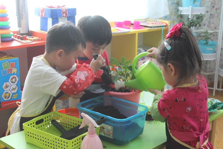 Цэцэрлэгийн жишиг эко сургалтын орчны танилцуулга, туршлага солилцох өдөрлөг болж байна