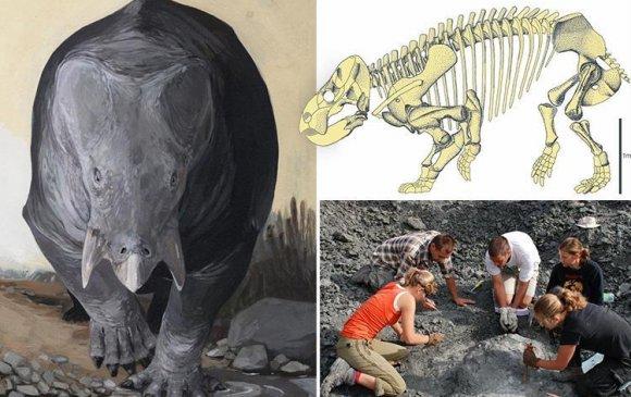 Польшоос 200 сая жилийн өмнө амьдарч байсан аварга амьтны яс олджээ