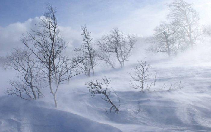 Анхаар 49 градус хүртэл хүйтэрч, цасаар шуурна
