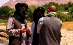 Афганистан дахь талибануудын удирдагчдын нэг амиа алджээ
