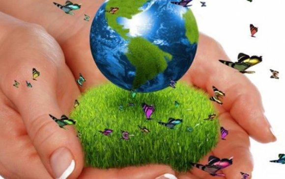 Байгалиа хайрлах сэтгэлтнийг багаас нь бэлтгэе