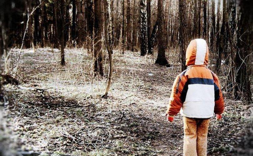 Гурван настай хүү тайгад ганцаараа шөнийг өнгөрүүлжээ