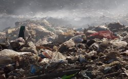 Аюултай хог хаягдал ихэсч байгаад экологичид санаа зовж байна