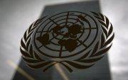 НҮБ-ийн ажилчдын 30 хувь нь бэлгийн хүчирхийлэлд өртжээ