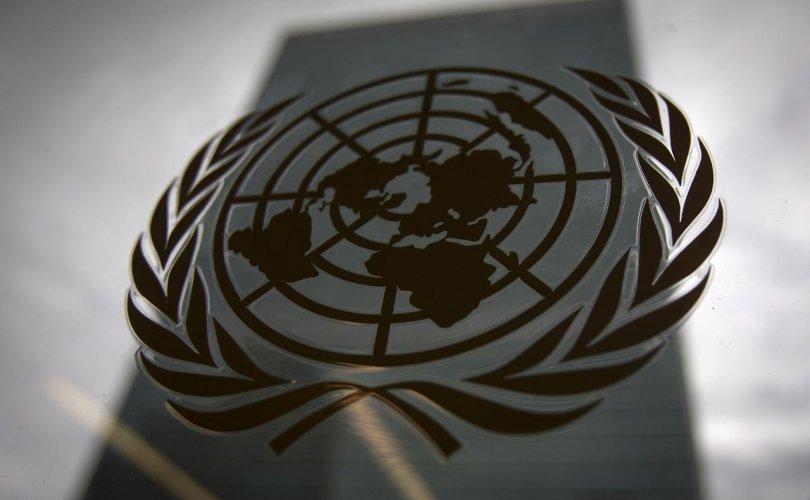 НҮБ-ын ажилчдын 30 хувь нь бэлгийн хүчирхийлэлд өртжээ