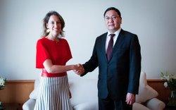 Монгол, Чилийн ГХЯ-д хоорондын анхдугаар зөвлөлдөх уулзалт болов