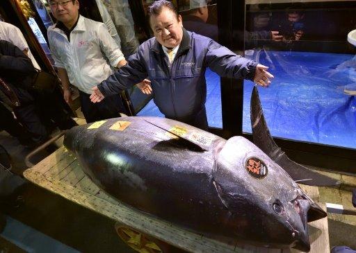 Гурван сая ам.долларын үнэтэй туна загас