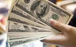 Жолоог нь сул тавьсан доллар