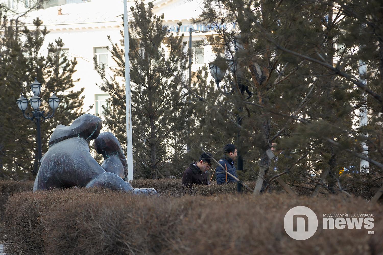 Цэцэрлэгт хүрээлэн Нийтийн эзэмшлийн талбай (16)