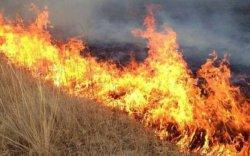 Өнжмөл өвсний түймрээс сэрэмжлүүлж байна!!!