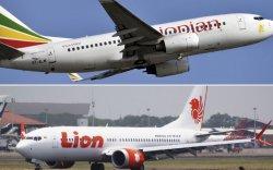 Индонез, Этиопын онгоц ижил шалтгаанаар осолдсон гэв