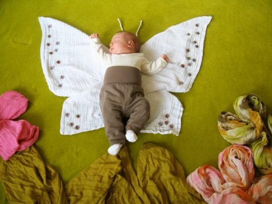 butterfly-550x412