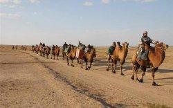 Жуулчид хүлээн авахад Монгол бэлэн үү?