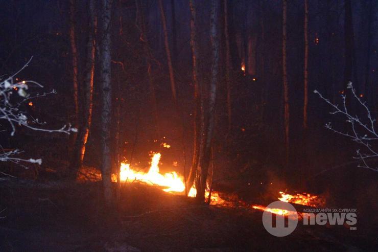 Сэлэнгэ аймагт аянга буусны улмаас ой хээрийн түймэр гарчээ
