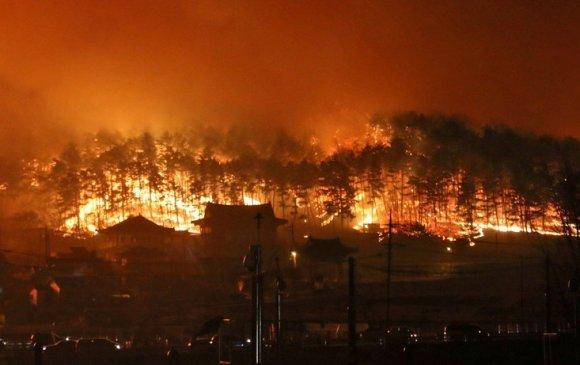 БНСУ-д гарсан түймрийн голомтод 617 монгол иргэн оршин суудаг