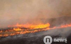 Ойн түймэр хилийн зурвасыг давжээ