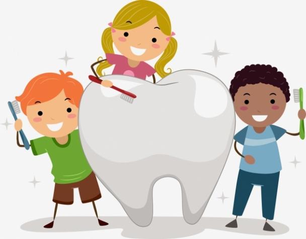 Шүдээ хэрхэн зөв угаах вэ?