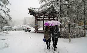 Цас шиг бороо, бороо шиг цаснаар