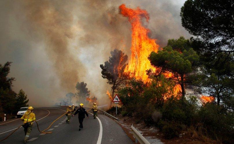 Өмнөд Солонгосын түймэрт нэг хүн амь үрэгджээ
