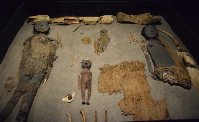 Дэлхийн хамгийн эртний занданшуулсан шарил олджээ
