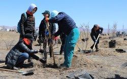 """""""ХААН Банкны ой"""" хөтөлбөрийн хүрээнд ТоС хөтөлбөрийн гишүүдтэй хамтран мод тарилаа"""