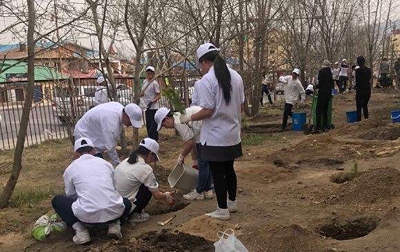 """""""Сургуулийн орчиндоо мод тарьцгаая-2019"""" үйл ажиллагааны нээлт боллоо"""